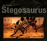 Stegosaurus by Sheryl Peterson