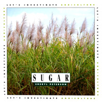 Sugar by Sheryl Peterson